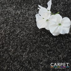 Faro Dark Grey Saxony Carpet
