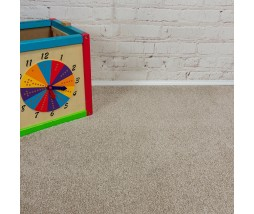 Delight Canvas Saxony Carpet